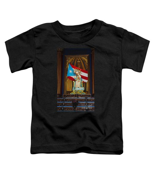 Virgin Mary In Church Toddler T-Shirt