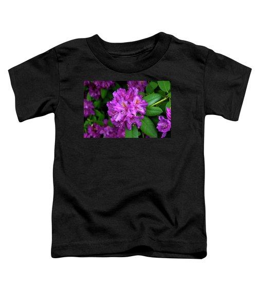Washington Coastal Rhododendron Toddler T-Shirt