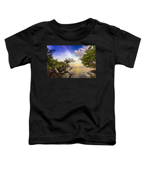 Water Sky Toddler T-Shirt