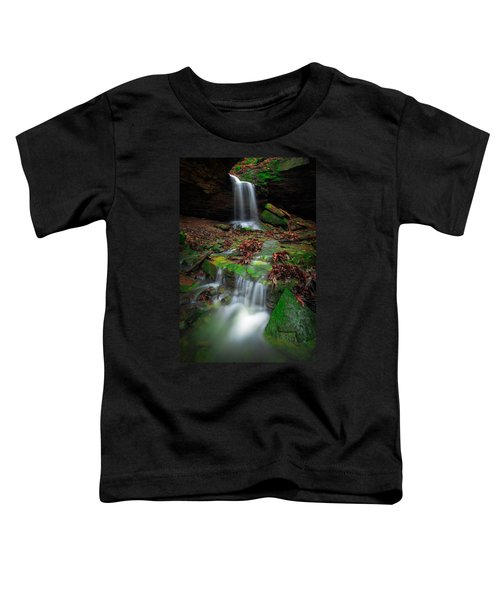 Frankfort Mineral Springs Waterfall  Toddler T-Shirt