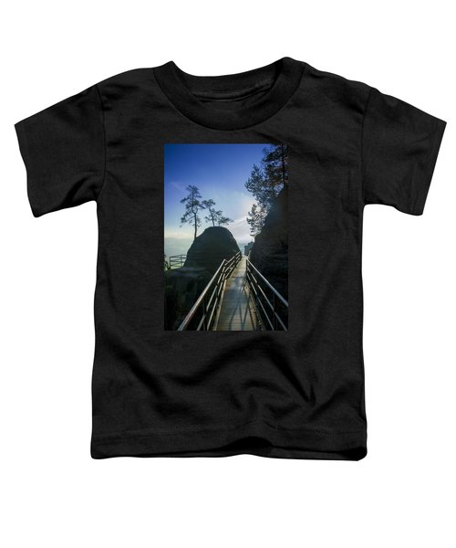 Way Into The Light On Neurathen Castle Toddler T-Shirt