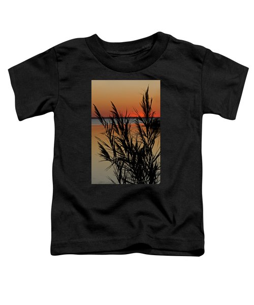 Whalehead Sunset Obx II Toddler T-Shirt