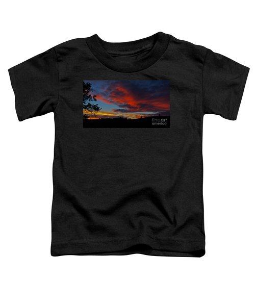Black Hills Sunset Toddler T-Shirt