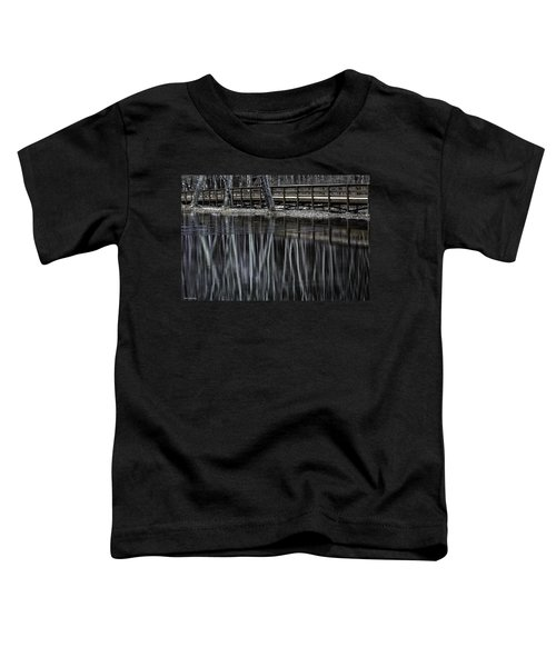 Winter Reflections Toddler T-Shirt