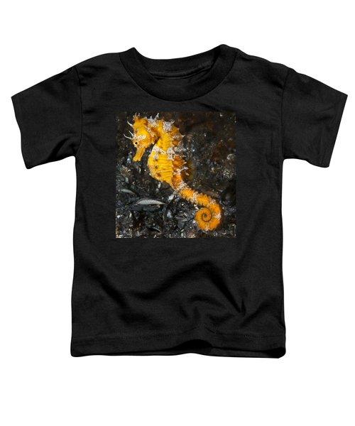 Yellow Longsnout Seahorse Toddler T-Shirt