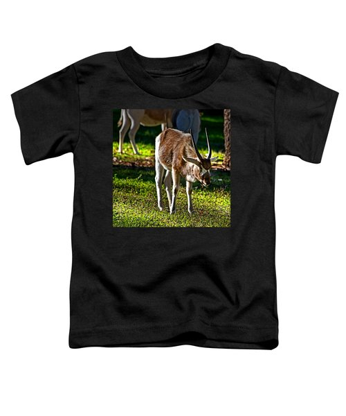 Youngster Addax Toddler T-Shirt