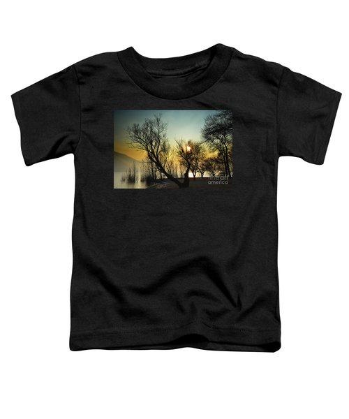 Sunlight Between The Trees Toddler T-Shirt