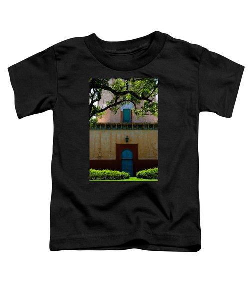Alhambra Water Tower Doors Toddler T-Shirt