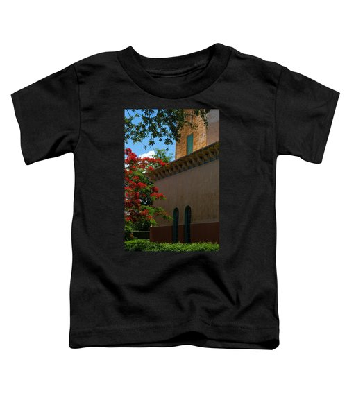 Alhambra Water Tower Windows And Door Toddler T-Shirt