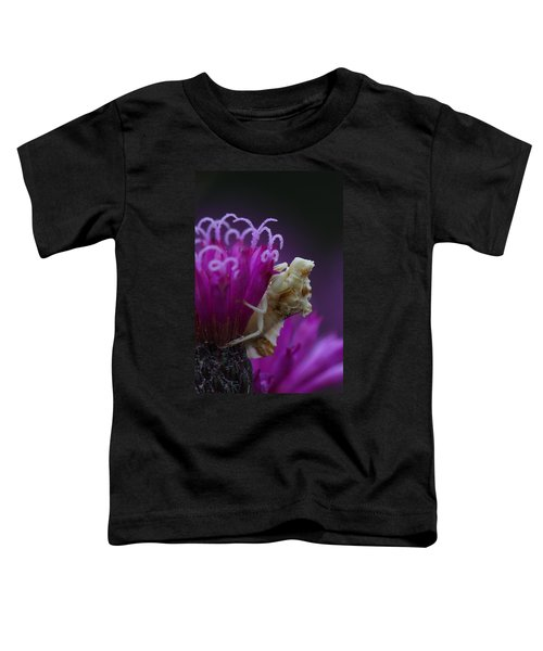 Ambush Bug On Tall Ironweed Toddler T-Shirt