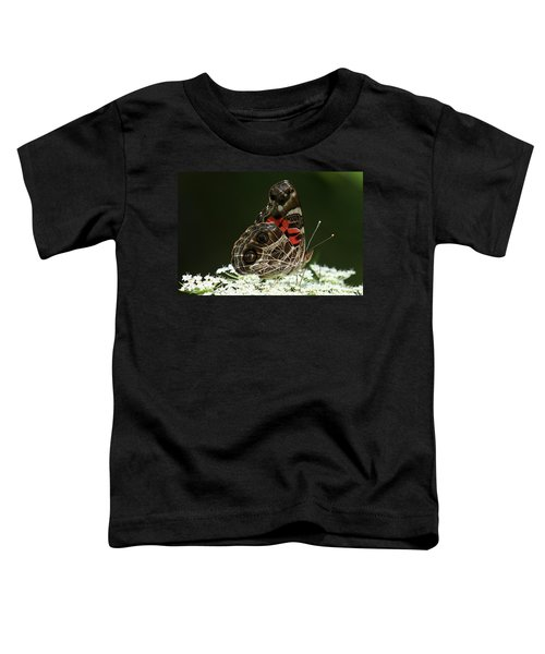 American Painted Lady Butterfly Toddler T-Shirt