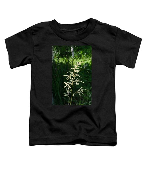 Aruncus Toddler T-Shirt