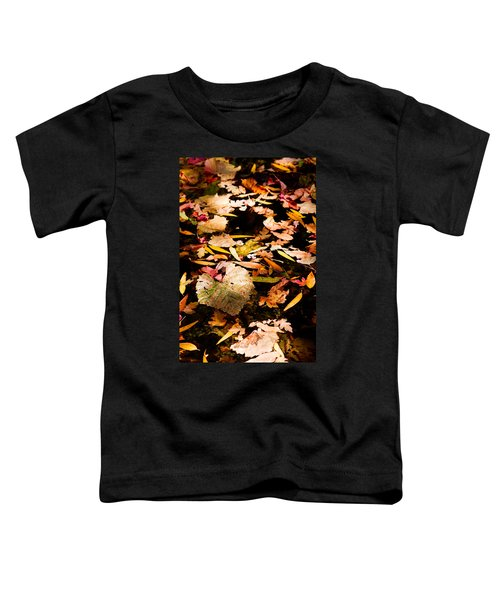 Autumn In Texas Toddler T-Shirt