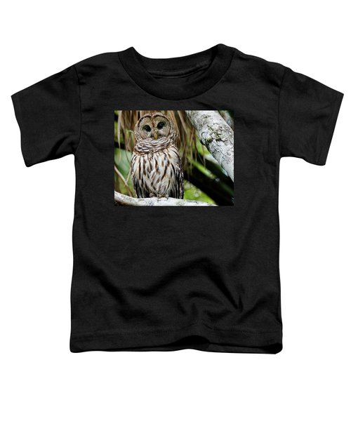 Barred Owl Toddler T-Shirt