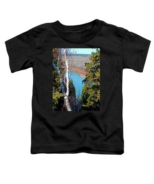 Birch Forest Toddler T-Shirt