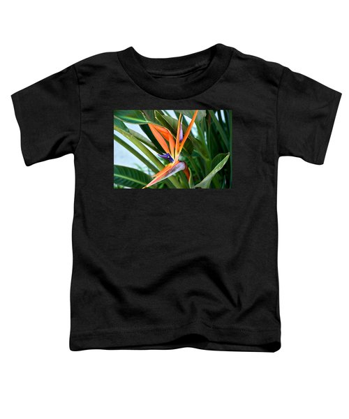 Bird Toddler T-Shirt