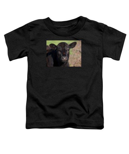 Black Cow Toddler T-Shirt