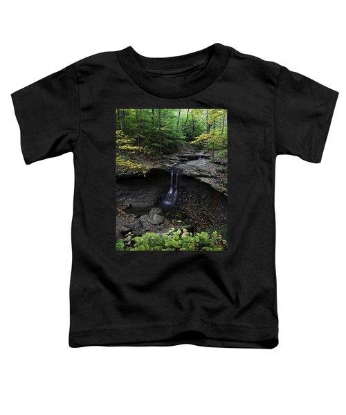 Blue Hen Falls Toddler T-Shirt