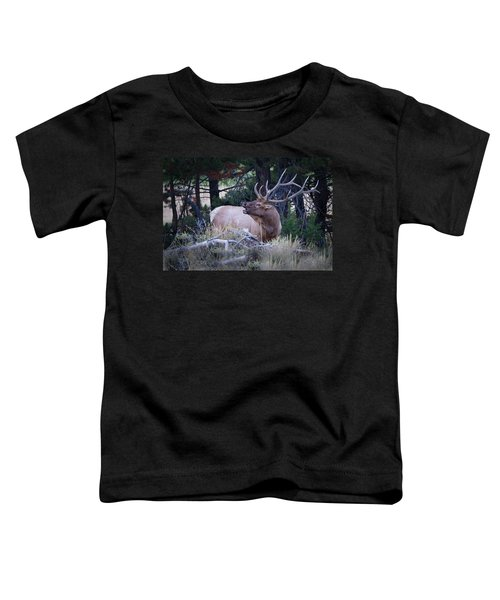 Bugling Bull Elk Toddler T-Shirt