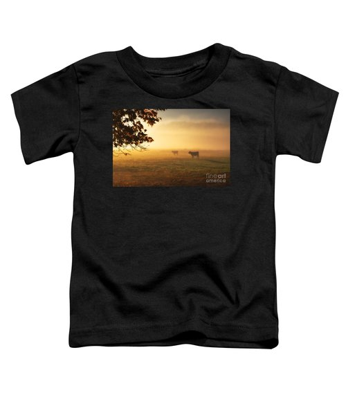 Cows In A Foggy Field Toddler T-Shirt