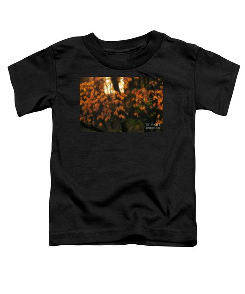 Fall Colours Toddler T-Shirt