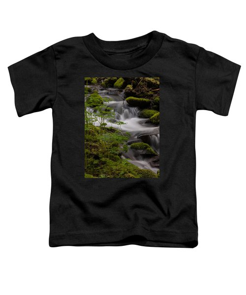 Gently Falling Toddler T-Shirt by Mike Reid