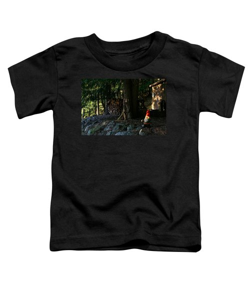 Gnome And The Woodpile Toddler T-Shirt
