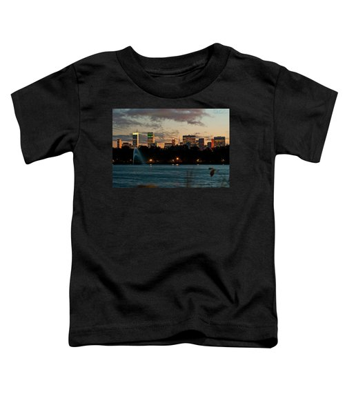 Great Pond Fountain Toddler T-Shirt