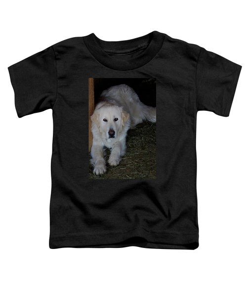Guarding The Barn Toddler T-Shirt