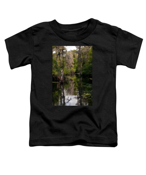 Hillsborough River In March Toddler T-Shirt