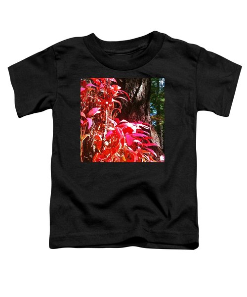 In The Shelter Of Your Arms Toddler T-Shirt