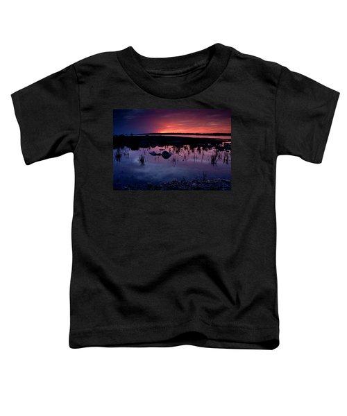 Lake Huron Sunset Toddler T-Shirt