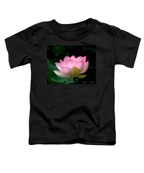 Lotus Beauty--blushing Dl003 Toddler T-Shirt