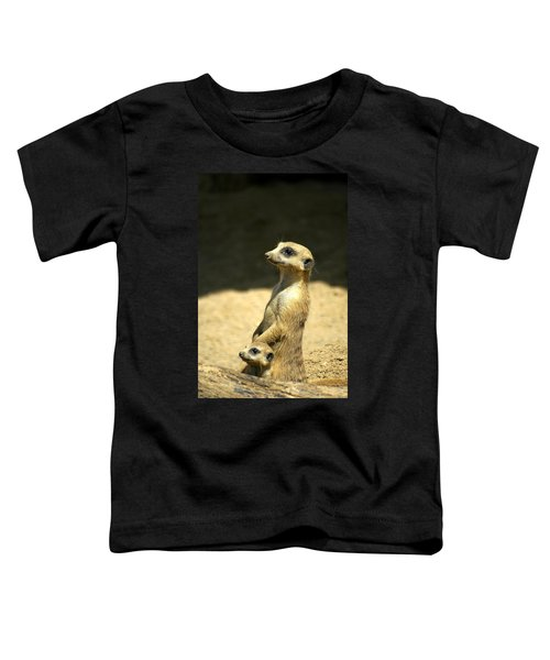 Meerkat Mother And Baby Toddler T-Shirt