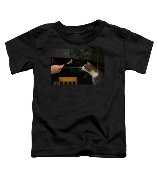 My Best Most Beloved Cat Toddler T-Shirt