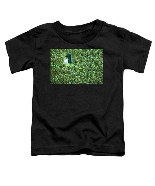 Napa Wine Cellar Window Toddler T-Shirt