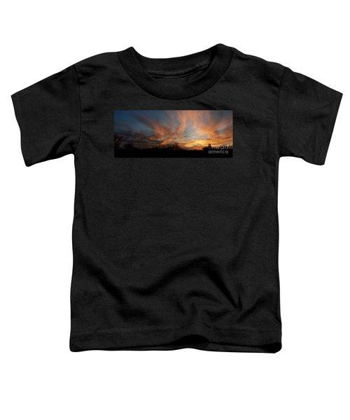 Nebraska Sunset Toddler T-Shirt