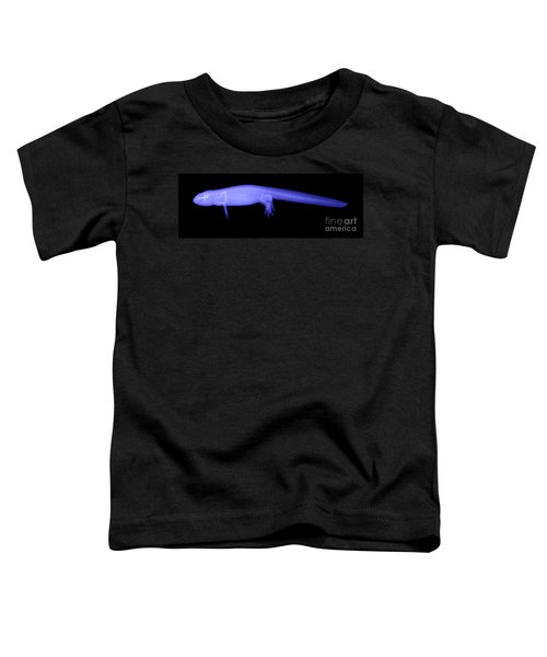 Newt Toddler T-Shirt by Ted Kinsman