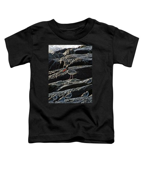 Oyster On The Rocks Toddler T-Shirt