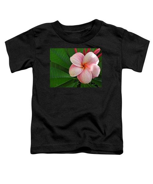 Pink Plumeria Toddler T-Shirt