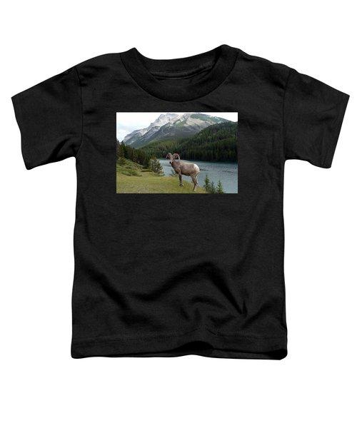 Portrait Of A Bighorn Sheep At Lake Minnewanka  Toddler T-Shirt