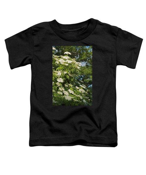 Potchen's Cascade Toddler T-Shirt