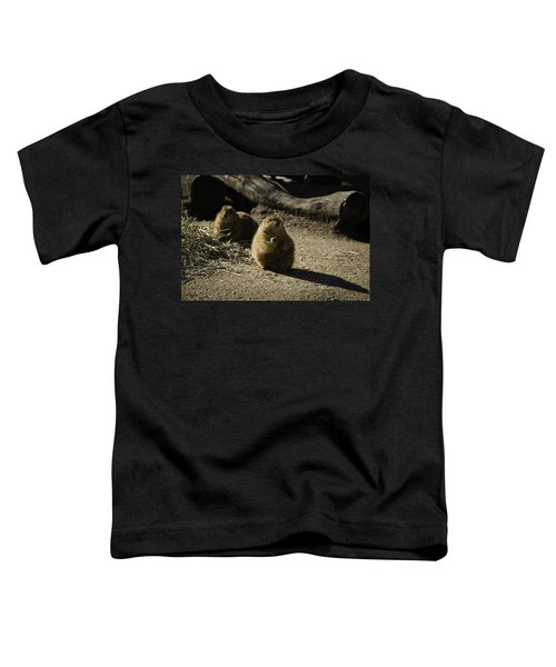 Prairie Dog Sees The Shadow Toddler T-Shirt