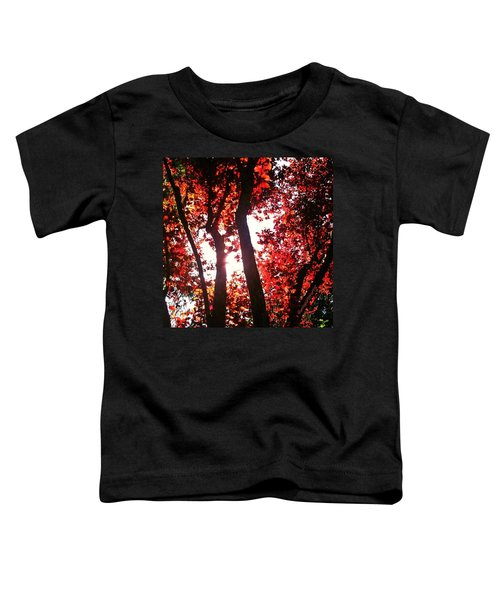 Reaching For Glory - Afternoon Light Toddler T-Shirt
