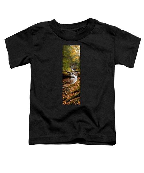 Roaring Fork Falls Toddler T-Shirt