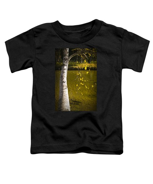 Salmon During The Fall Migration In The Little Manistee River In Michigan No. 0887 Toddler T-Shirt