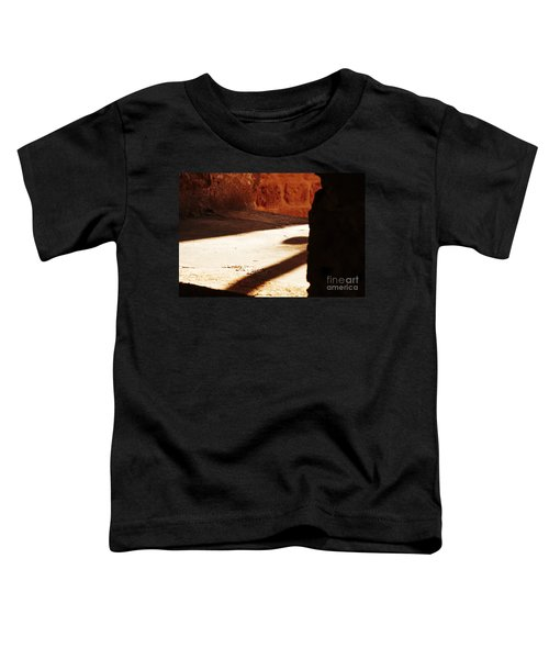 Shadow On The Windows Toddler T-Shirt