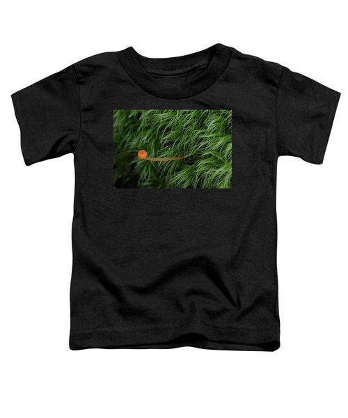 Small Orange Mushroom In Moss Toddler T-Shirt