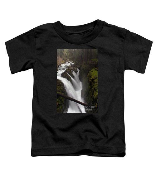 Sol Duc Falls Toddler T-Shirt by Mike Reid