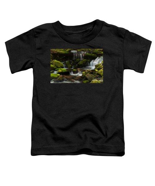 Spotlights Toddler T-Shirt by Mike Reid